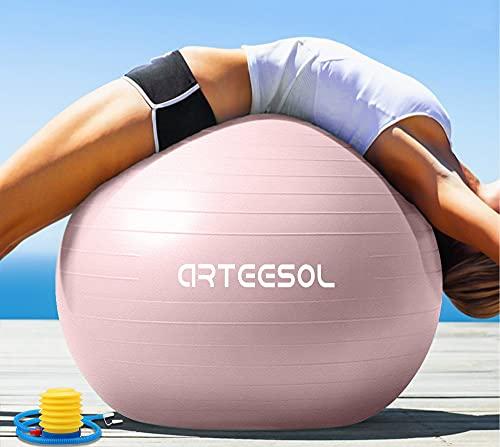 arteesol Gymnastikball Pilates Ball 45cm / 55cm / 65cm / 75 cm/ 85cm inkl. Pumpe Anti-Burst Sitzball für Yoga Exercise Fitness Physiotherapie