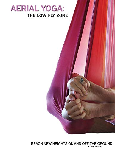 Aerial Yoga: The Low Fly Zone (The Aerial Attitude, Band 2)