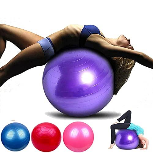 65cm Gymnastikball, Pilates Ball, Yoga Ball Fitnessball, Sitzball Büro, als Fitness Yoga Core Büro-Stuhl, als Fitness Kleingeräte, Extra Dick, rutschfest, Berstsicher Pezzi Ball mit Luftpumpe, Rot
