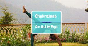 Chakrasana