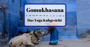 Gomukhasana Kuhgesicht