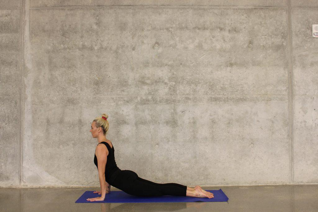 Yoga Asana Kobra