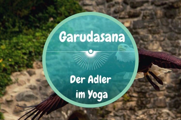 Yoga Adler ~~ Asana: Garudasana