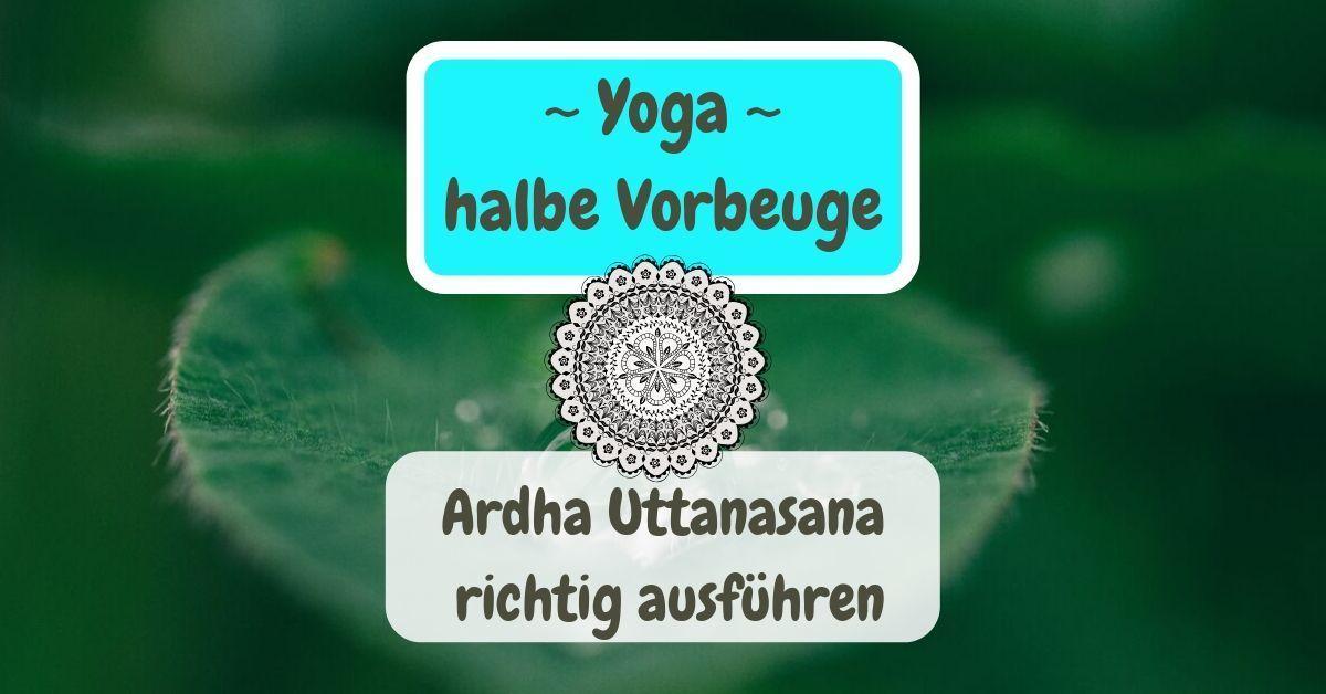 Yoga halbe Vorbeuge