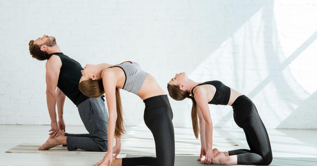 kamel yoga